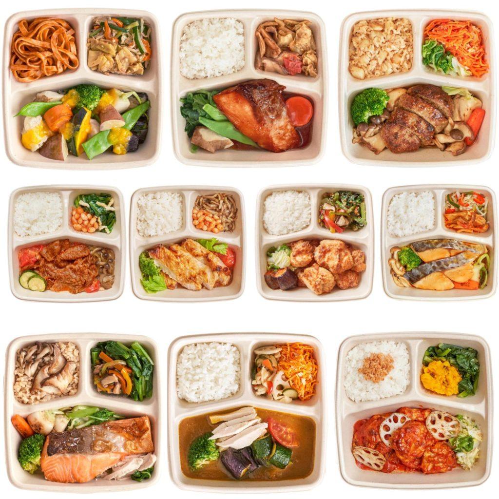 おいしいプラスの冷凍お弁当10種類